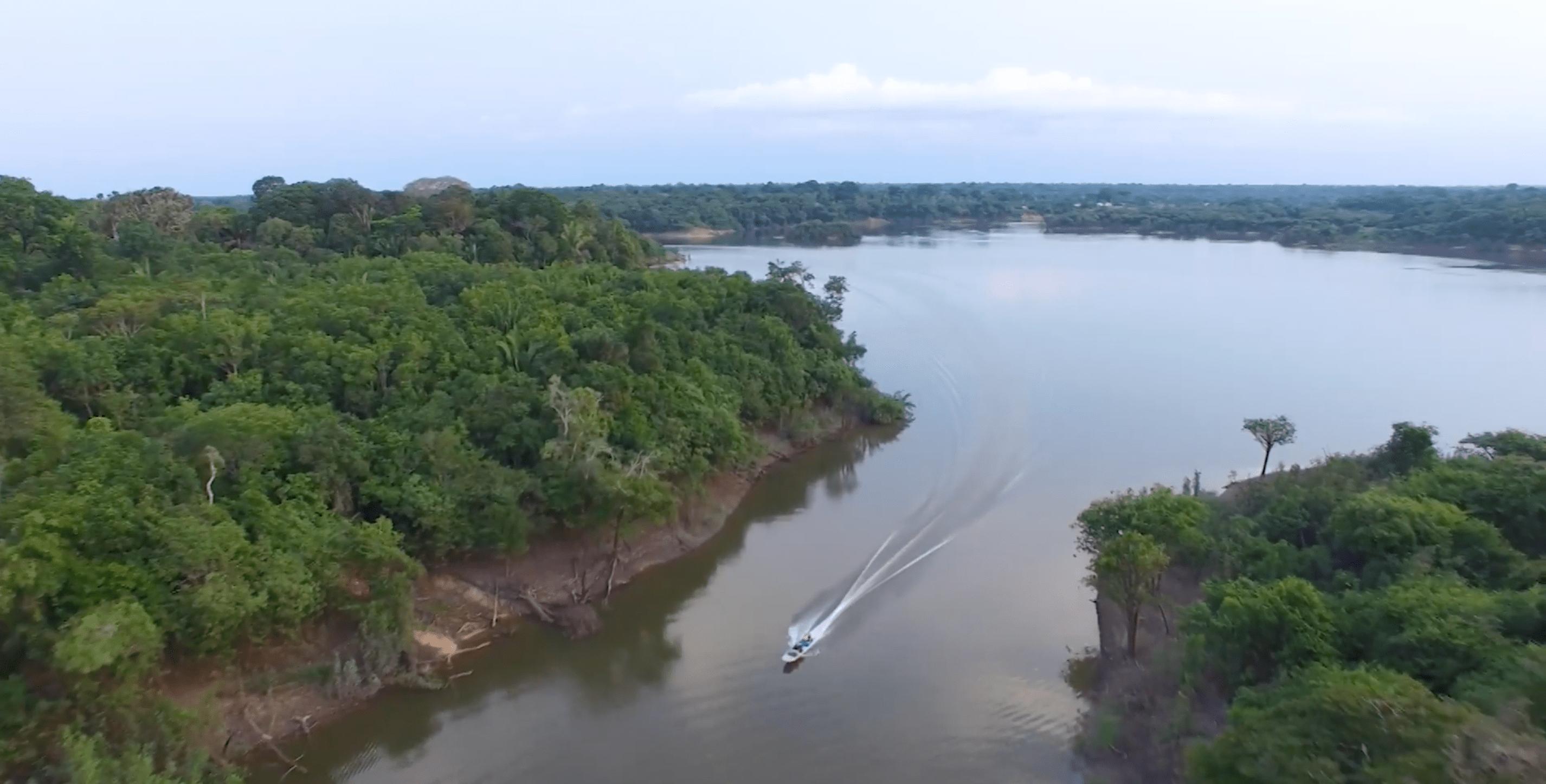 Amazônia tem milhares de espécies de peixes