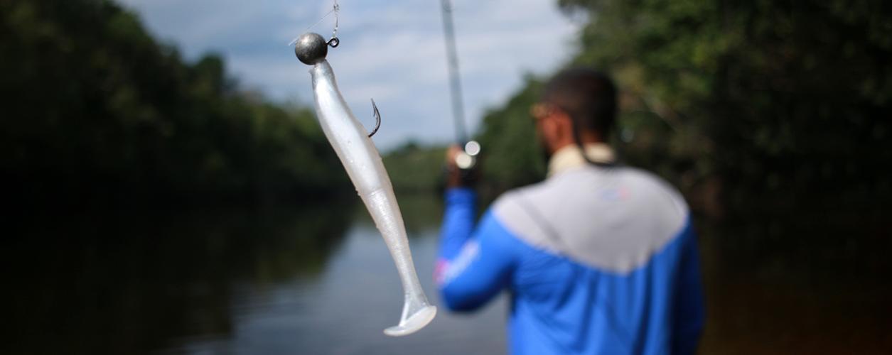 Onde pescar? Conheça grandes destinos da região Norte e Nordeste do Brasil