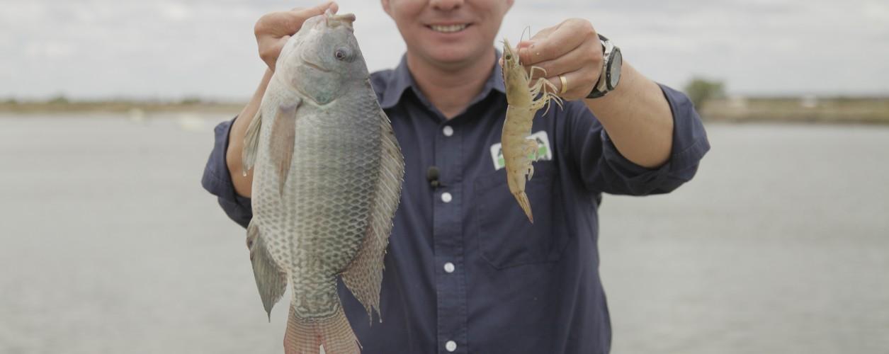 779d56074 Dê preferência para pescados de criatório na Sexta-feira Santa