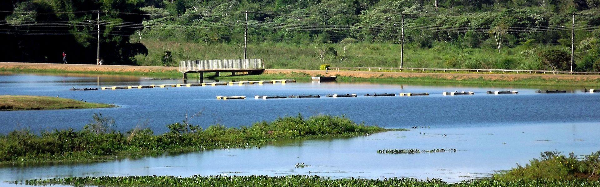 Instituto de Pesca oferece curso sobre piscicultura