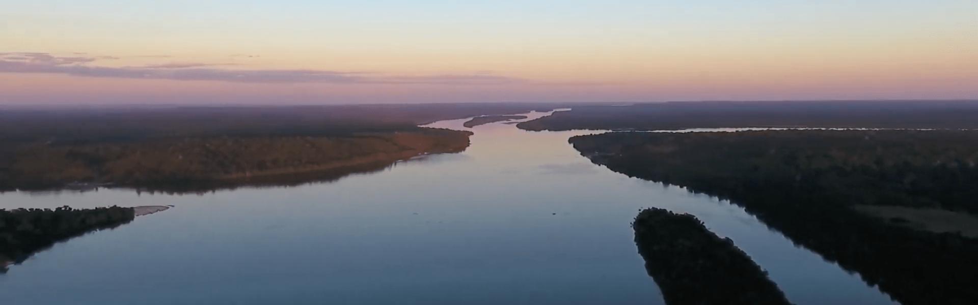 Dia da Amazônia: momento para conscientizar sobre a preservação da maior floresta tropical do planeta