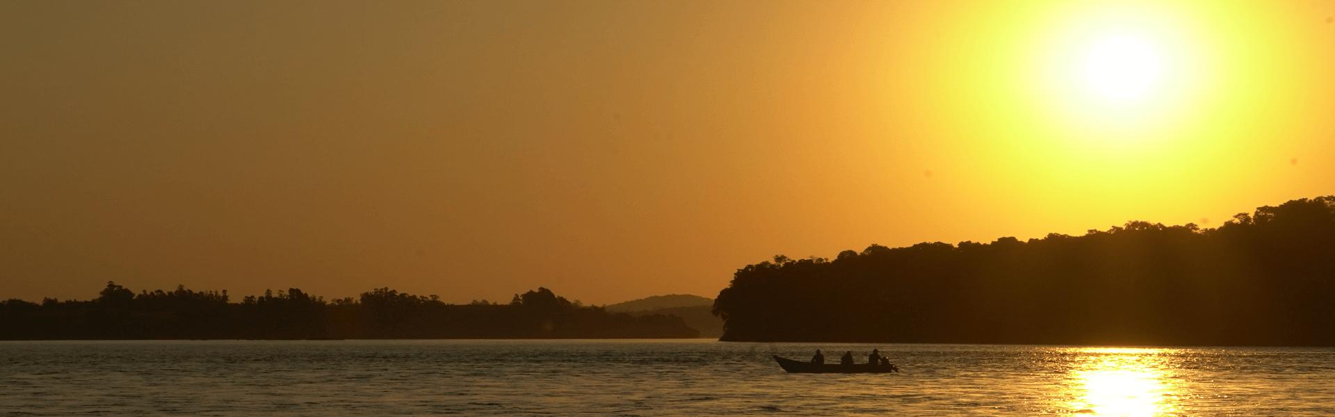 7 coisas que você pode fazer para preservar o meio ambiente