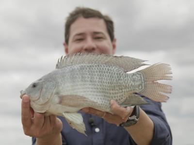 Mato Grosso do Sul tem aumento na exportação de pescado em 2020