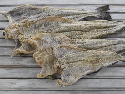 Brasil é o terceiro país do mundo no ranking norueguês de exportação de pescado
