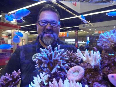 André Longarço e sua paixão: os aquários