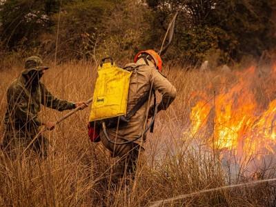 Apresentadores da Fish TV testemunham incêndios no Pantanal; confira relatos