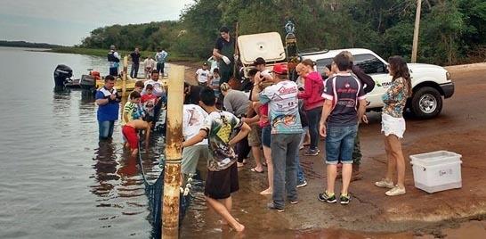 Itaipu faz soltura de peixes em torneio de pesca