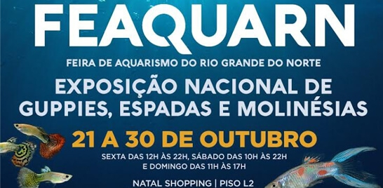 Feira de Aquarismo do Rio Grande do Norte segue até domingo