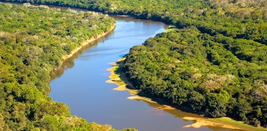 Jovem é preso por pesca predatória em Rio Negro