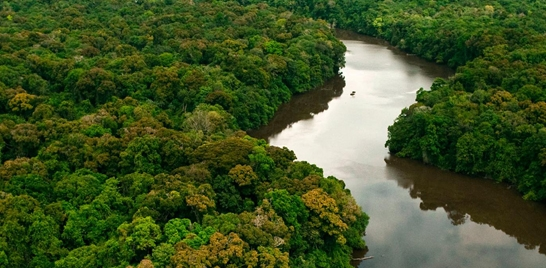 NOVAS REGRAS PARA PESCA ESPORTIVA SUSTENTÁVEL NA AMAZÔNIA