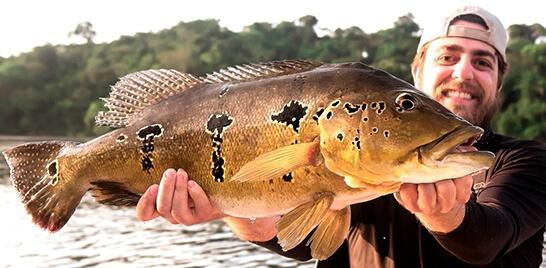 Amazônia no Pará: um patrimônio natural de pesca inexplorado