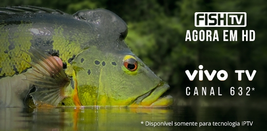TRANSMISSÃO DE SINAL HD DA FISH TV CHEGA NA VIVO