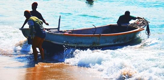 MPA faz ações para melhorar a gestão pesqueira no Brasil