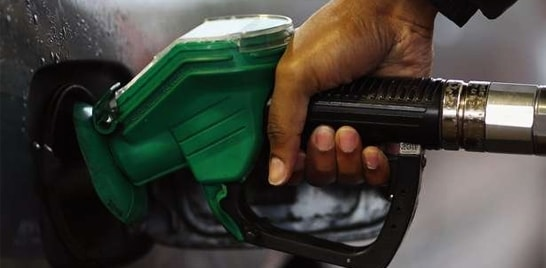 Petrobrás passa a produzir biodiesel com óleo de peixe