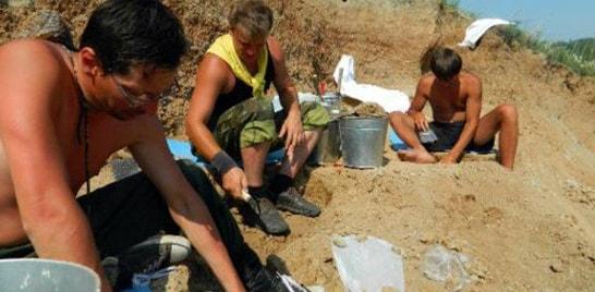 Identificado réptil marinho de 70 milhões de anos na Rússia