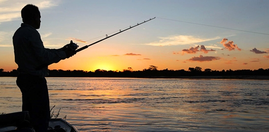 MPA diz que pesca esportiva é meta para 2015