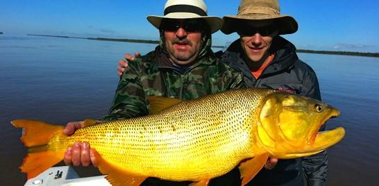 A preservada natureza do pantanal argentino