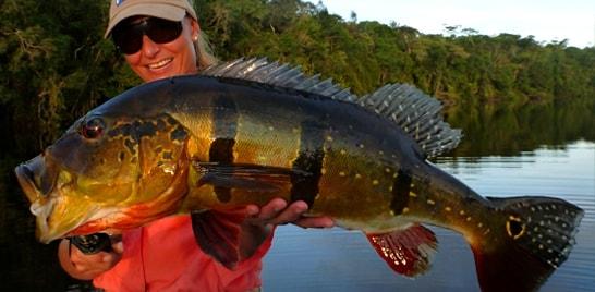 Campeonato Brasileiro e Mundial de pesca esportiva no Brasil