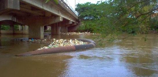 Peixes aparecem mortos na margem do Rio dos Sinos no RS