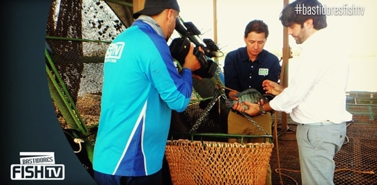 Bastidores Fish TV - Aqua Negócios grava em parceria com Grupo Ambar Amaral
