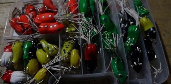 Pesca Dinâmica e Tropical Frog
