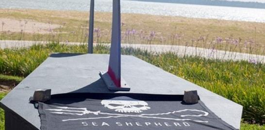 Instituto Sea Shepherd Brasil do Espírito Santo participa de debate contra a pesca predatória