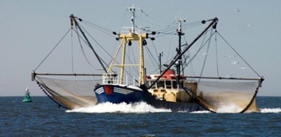 Google fará monitoramento de embarcações no combate à pesca ilegal