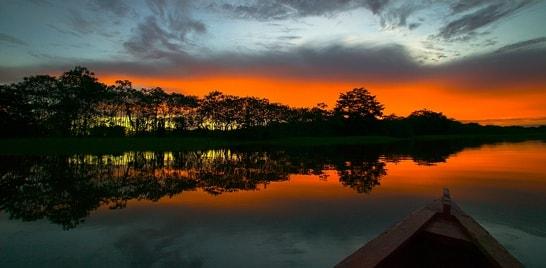 Governo do Amazonas irá rever lei que prevê criação de peixes não nativos