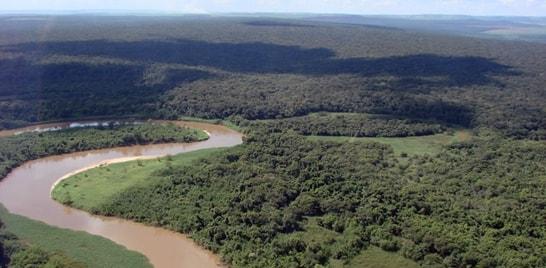 Soltura de Alevinos em Mogi Guaçu dia 05 de junho