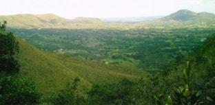 Natureza do país não está protegida, dizem brasileiros