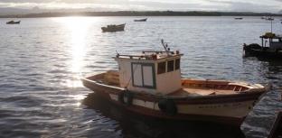 Aprovado projeto que proíbe a pesca com rede em Vitória