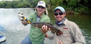 Paraná recebe o 13º Campeonato de Pesca Esportiva à Traíra