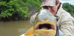 Pescaria e preservação ambiental