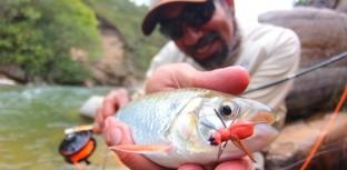 Pesquisa sobre a pesca com mosca no Brasil