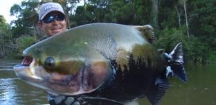 Proibida a pesca de tambaqui até março de 2015