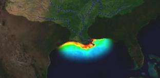 EXPANSÃO DE ZONAS MORTAS NOS OCEANOS É PREOCUPANTE