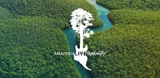 ROCK IN RIO LANÇA O PROJETO SOCIOAMBIENTAL AMAZONIA LIVE