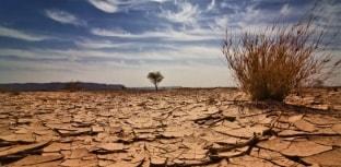 Boletins meteorológicos para daqui 30  anos anunciam mudanças climáticas assustadoras
