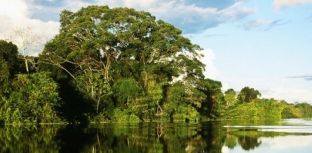 5 CURIOSIDADES SOBRE A AMAZÔNIA, ALÉM DA PESCA ESPORTIVA