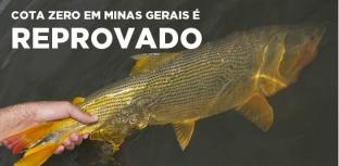 Cota zero em Minas Gerais é reprovada