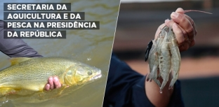 SECRETARIA ESPECIAL DA AQUICULTURA E DA PESCA É TRANSFERIDA PARA SECRETARIA-GERAL DA PRESIDÊNCIA DA