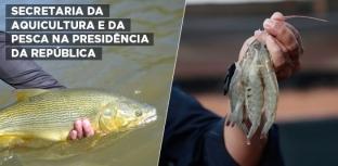 SECRETARIA ESPECIAL DA AQUICULTURA E DA PESCA É TRANSFERIDA PARA SECRETARIA-GERAL DA PRESIDÊNCIA DA REPÚBLICA