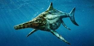 Encontrado fóssil de réptil marinho pré-histórico na Escócia