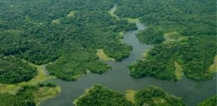 Garimpo acelera desmatamento na América Latina