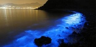 Manchas fluorescentes surgem misteriosamente no mar em Hong Kong