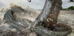 Jacaré pré-histórico brasileiro era mais forte que tiranossauro