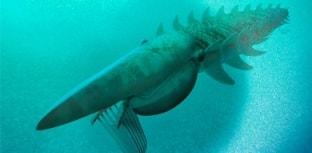 Descoberta criatura marinha que viveu há 480 milhões de anos