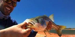 Abraturpe quer unir turismo de pesca do Brasil