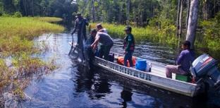 Pesquisadores estudam biodiversidade de peixes no rio Jutaí