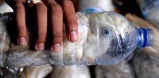 Encontradas 24 aves em extinção presas em garrafas plásticas na Indonésia